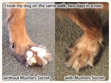 mushers1